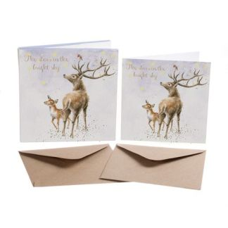 The Stars in the Bright Sky Card Box Set