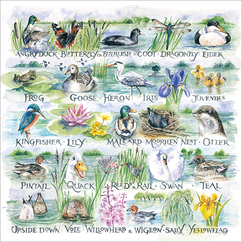 Waterside alphabet Val Goldfinch