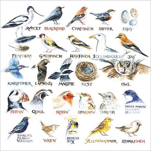 Bird Alphabet Val Goldfinch