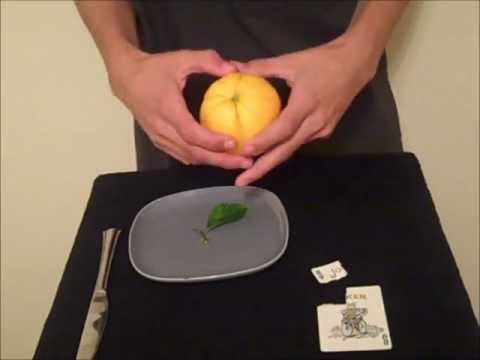 lemon card trick