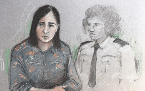 Mother who suffered from poor mental health admits smothering baby with pillow 1