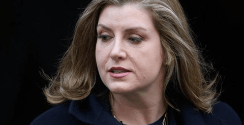 Westminster will act on Northern Ireland's strict abortion law, Penny Mordaunt 9