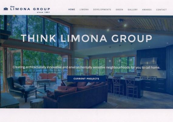 Silver - Limona Group