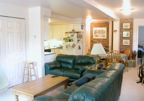 Gold - Maximilian Huxley Construction and Jodi Foster Interior Design - The Hangout - before