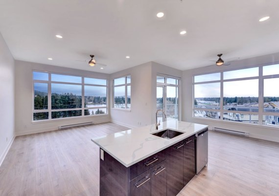 Silver - Westhills Land Corp., Victoria Design Group Ltd. and Verity Construction - Lakepoint One Condominium