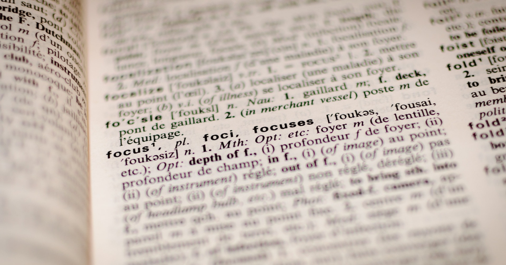 辞書のテキスト
