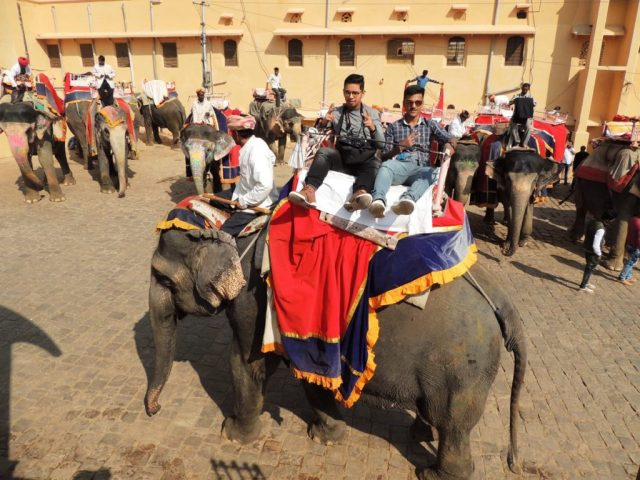 Educational Tour to Jaipur 2017