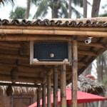 Mad Monkey Nacpan Beach speaker
