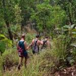 Trekking in Chiang Mai Thailand