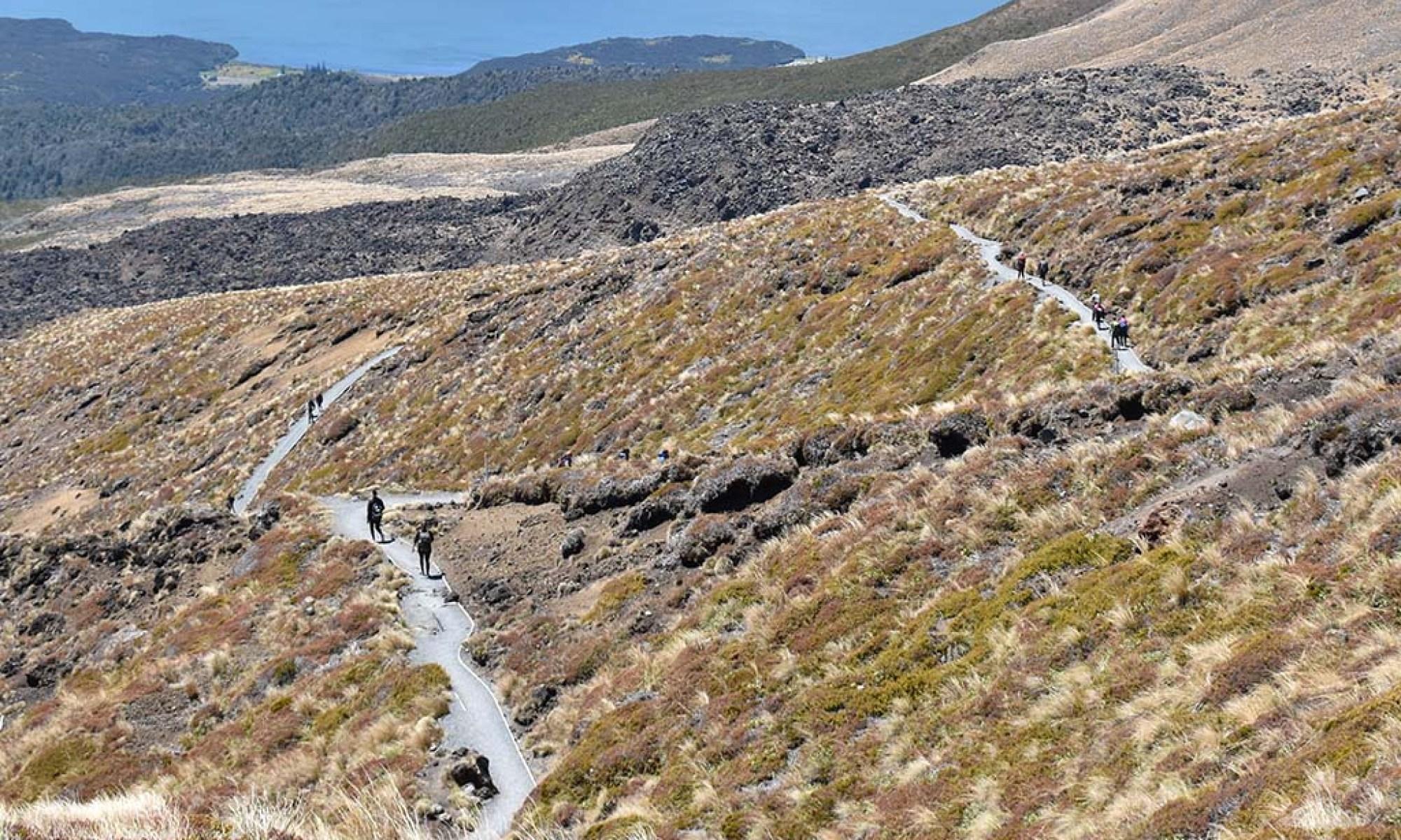 New Zealand South Island Fjordlands