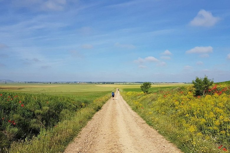 El Camino de Santiago in Spain is renowned as one of the best hikes in Europe