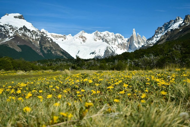 Spring is one of the best times to visit Patagonia for hiking, with flowers blooming and fewer tourists around