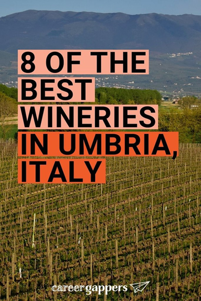 Our selection of the best wineries in Umbria, the 'green heart of Italy', after we spent a week of exploring its lush vineyards and countryside. #wine #wineries #umbria #italianwine #italywine
