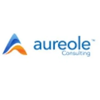 Digital Marketing Officer at Aureole Consulting Limited