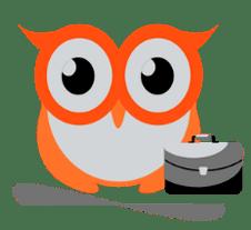 Career Owls