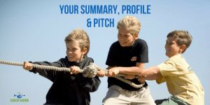 Your Summary, Profile and Pitch