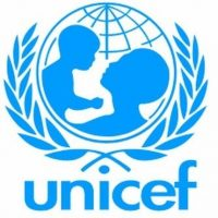Social Policy Officer, (NO-2) 1