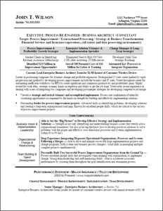 executive resume amp professional resume samples