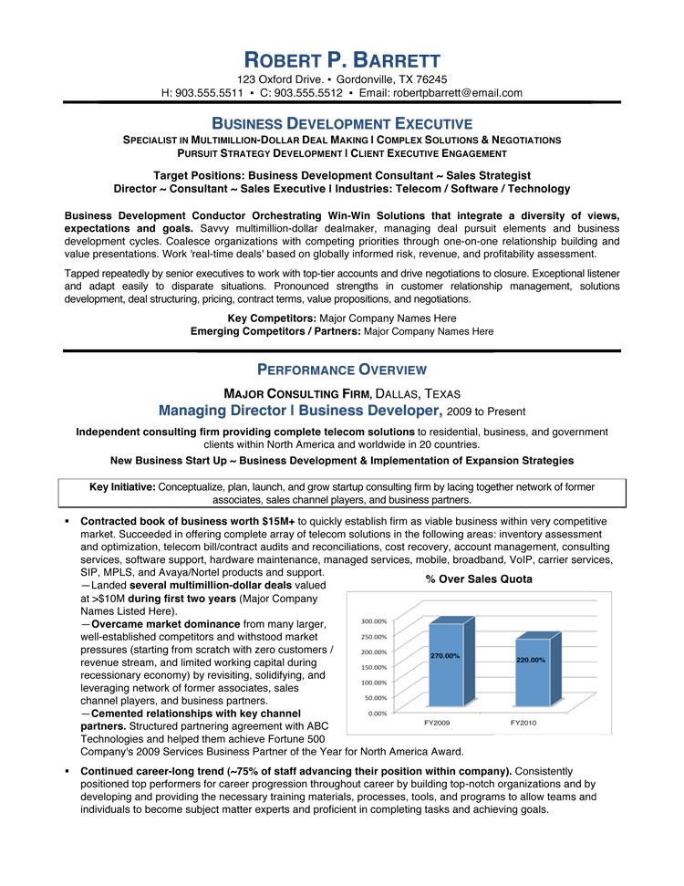 Executive Summary Resume. Executive Summary Resume Example The