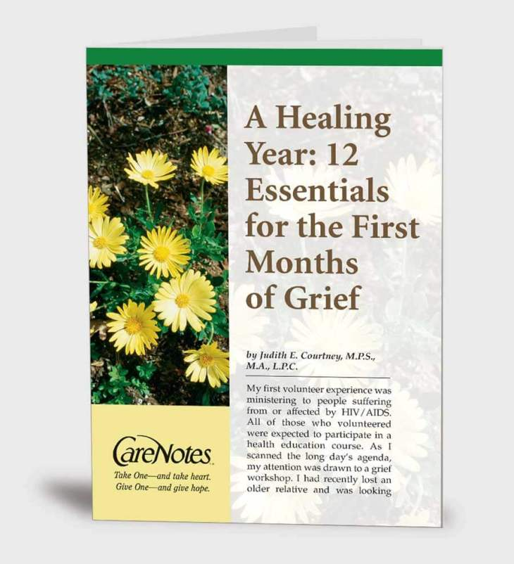 A Healing Year: 12 Essentials for the First Months of Grief
