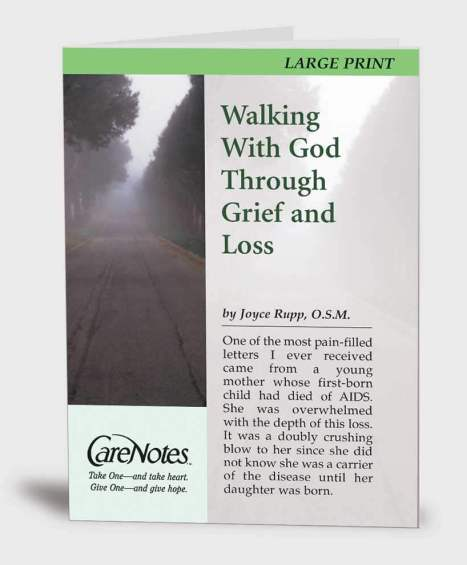 Walking With God Through Grief and Loss LARGE PRINT