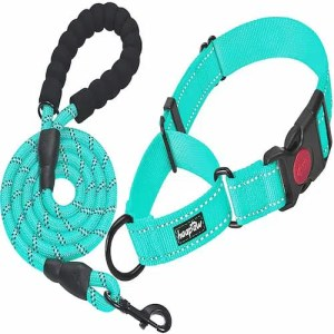 Haapaw 2 Packs martingale dog collar with quick release buckle