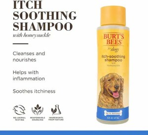 Brut's bees dog shampoo for itchy skin
