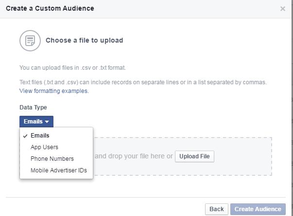 choose-audience-facebook-part6