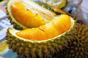Harga Durian Musang King RM100 Sekilo?