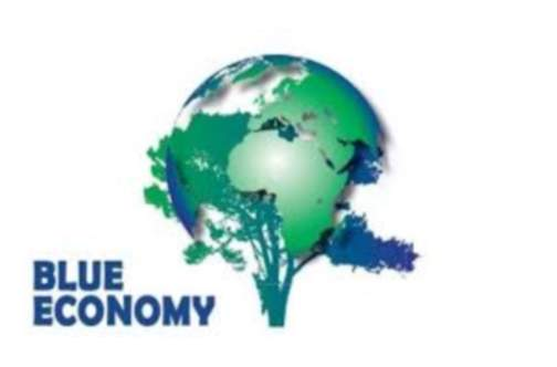 Caribbean countries urged to participate in 'blue economy' challenge