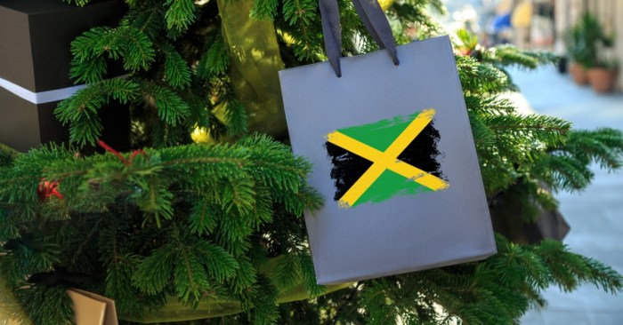 JDTAN Brings Joy to the World with a Virtual Jamaican Christmas Celebration