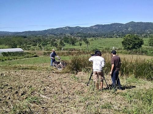 ADAPTA: Nuevos videos educativos del Centro Climático del Caribe promueven la agricultura sostenible - Caribbean Climate Hub
