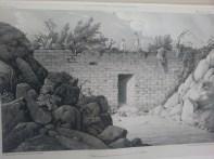 Luciano Castañeda dibujo