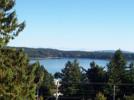 Over the Salish Sea: Oyster Harbour, Pacific Ocean from Cedar Tree, 2012