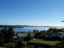 Over the Salish Sea: Oyster Harbour, Pacific Ocean from Cedar Tree, Spring 2012