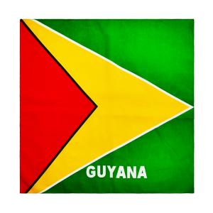 Guyana-Square-Fete-Flag