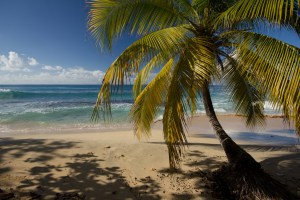 More beautiful beaches of Grenada