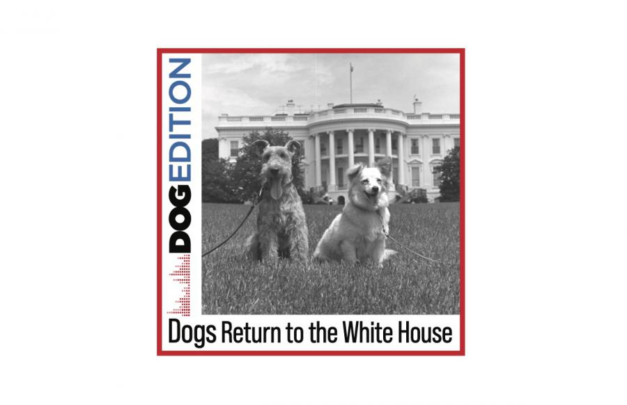InDOGural Episode of New Dog Edition Podcast Focuses on Dogs