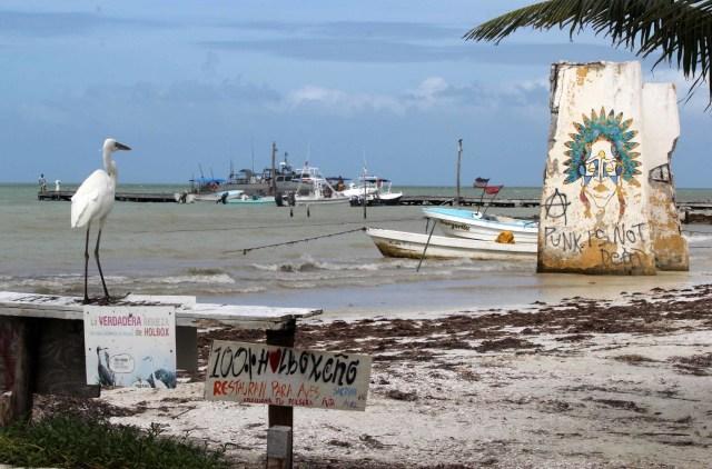 La Isla Grande de Holbox  continúa bajo protección