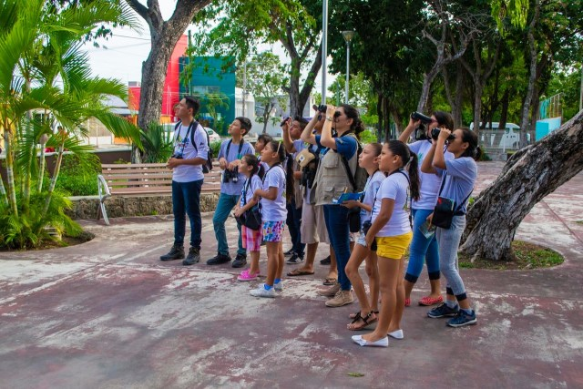 Ambientalistas infantiles de Cozumel reanudan actividades en 2020 con capacitación para identificar aves