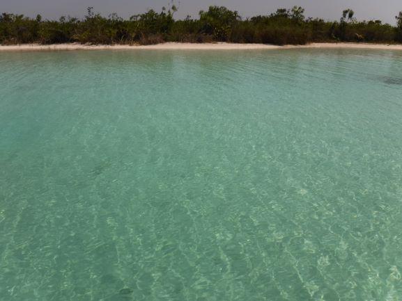 El desarrollo turístico de Bacalar debe respetar el manglar: Protur