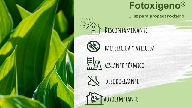 Pintura ecológica que produce oxígeno: Fotoxígeno