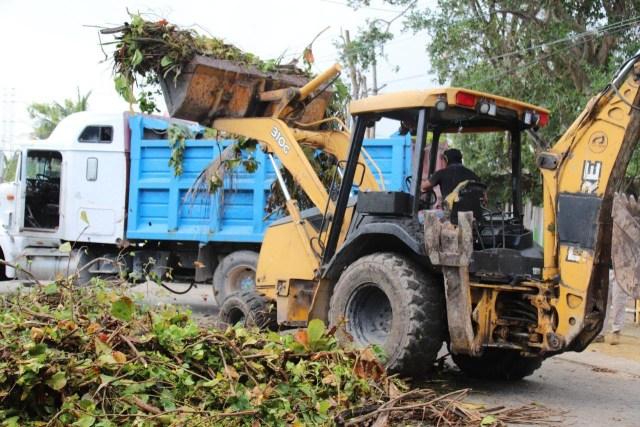 """Ayuntamiento de Puerto Morelos retira más de dos mil toneladas de vegetación tras """"Delta"""""""