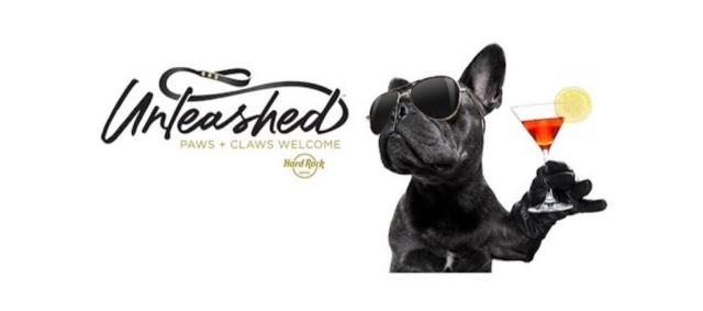 Cadena hotelera lanza su programa de mascotas: Unleashed