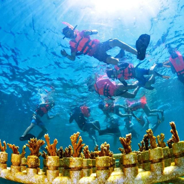 Turismo eco-arqueológico, entre las opciones más recomendables en la actualidad