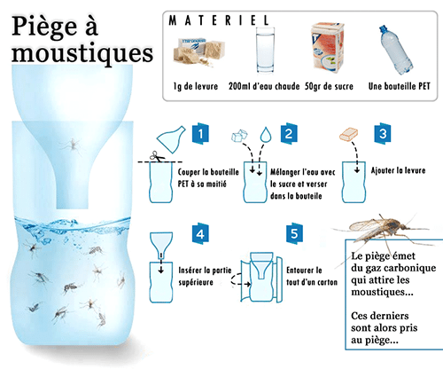 piqure-de-moustique-anti-moustique-caraibexpat-piege-anti-moustique-inefficace