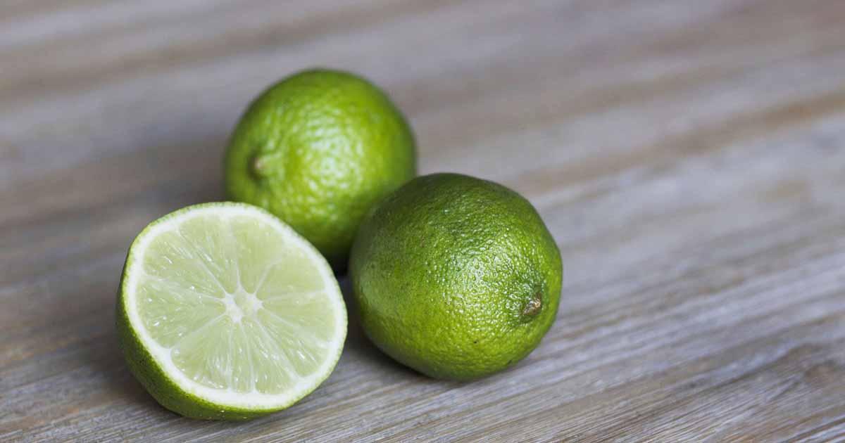 piqure-de-moustique-anti-moustique-caraibexpat-citron