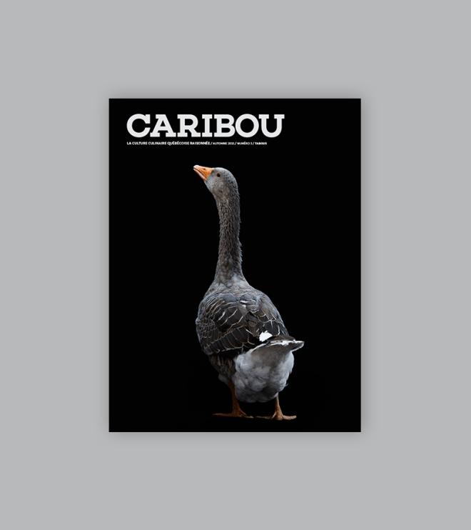 Caribou_numéro 3_Tabous