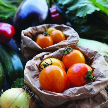 Autosuffisance alimentaire, légumes bios