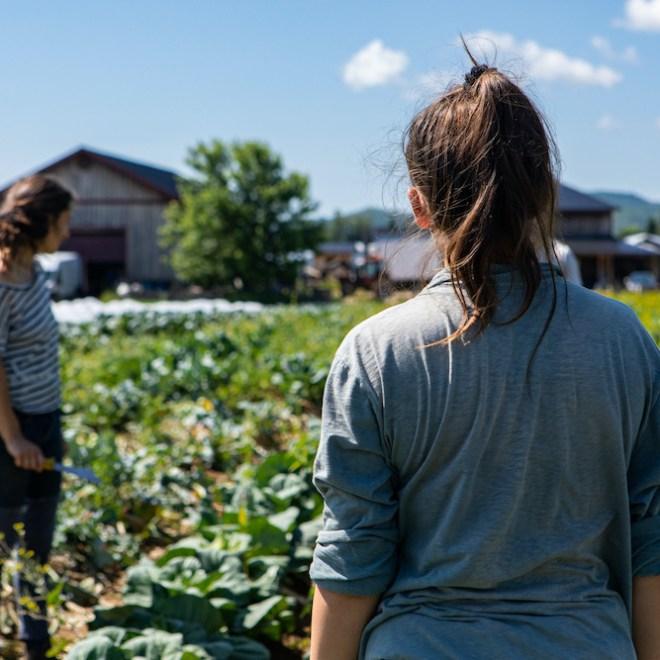 Femmes agriculture bio